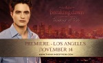 tor-breakingdawn-la2011-rob
